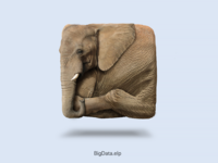Elephant Icon (Free Download)