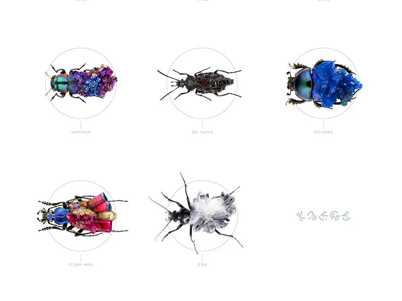 Bugs + Stones retouching fantasy nature photo diamond stones bug illustration