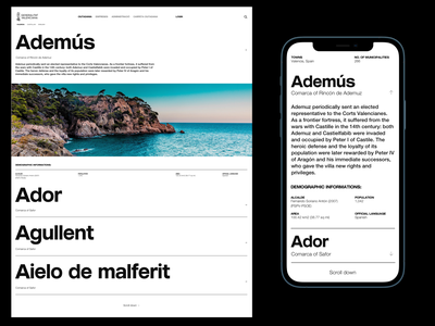 Generalitat Valenciana Website - Town Catalogue designsystem poster design ui design ux design minimal ui ui ux designer userinterfacedesign web design ui  ux design ui design typography design