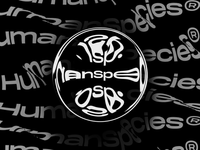 Crystal/Transparent Ball - Typography Effects Exploration black and white animation design aftereffects typo typeface minimal typography design