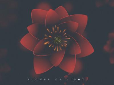 Flower Of Light light flower noise sketch app ilustration