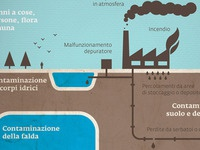 Detail for Pool Inquinamento Infographic