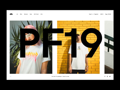Over Website PF19