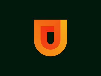 Shield/Security Logo/Mark Design