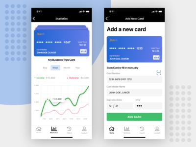 Concept. Banking / Fin-tech App: statistics; adding card