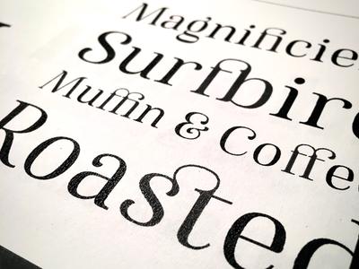 Famosa Specimen font female ampersand decoration ligature serif typography type specimen myfonts