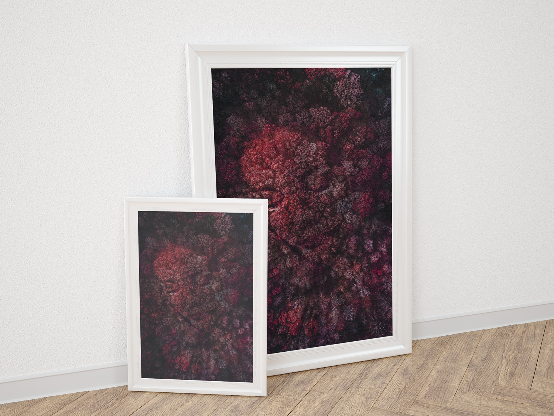 Kodama Prints aerial dramatic expressive elegant vibrant vivid colourful abstract