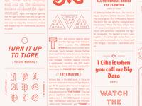 Tigre Poster 1