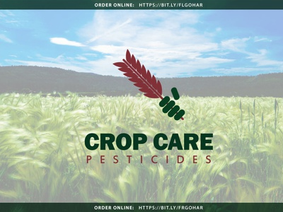 CROP CARE PESTICIDES brand brand identity logodesign branding logo illustrator graphic design identity