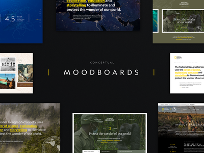 Conceptual Moodboards concept moodboards cx web design responsive design web ux identity ui typography branding design