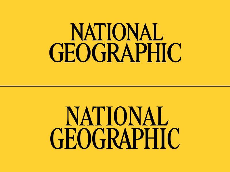 Nameplate Typography letterforms identity mark wordmark typography type nameplate branding design logo