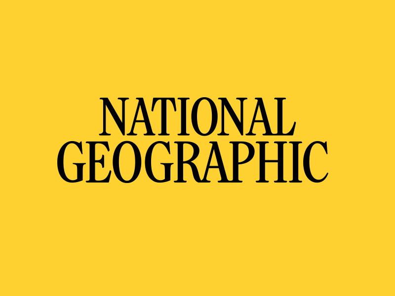 NG Gatefold wordmark typography type nameplate mark logo letterforms identity design branding