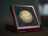 Changemaker Medal Concept