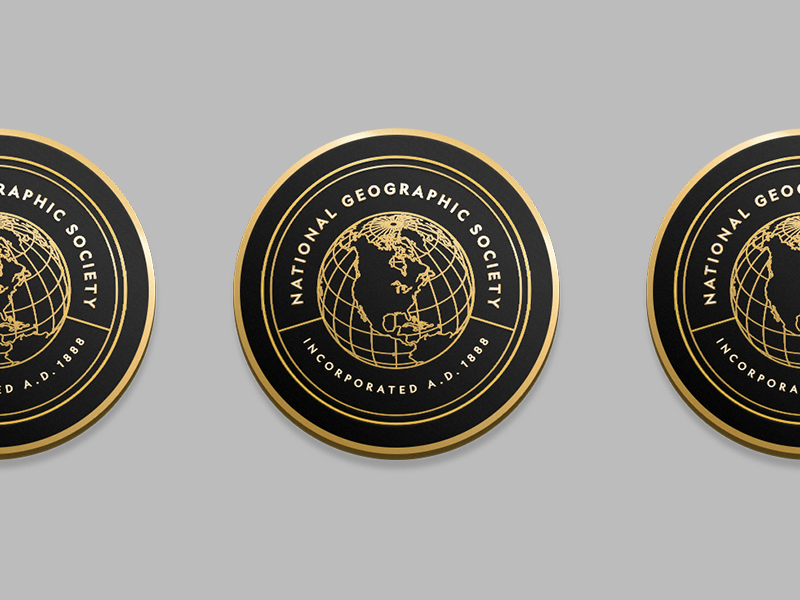 NGS Pin Concept patch badge typography identity logo world icon globe illustration pin design branding