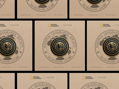 Pin Packaging Idea
