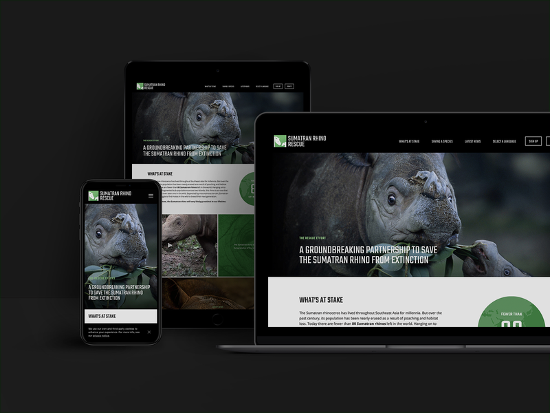 Sumatran Rhino Rescue Relaunch squarespace mobile interaction ux ui rhino geography planet wildlife website responsive brand design