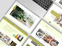 Oliva-Website Concept