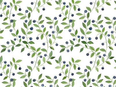 Watercolor blueberries pattern