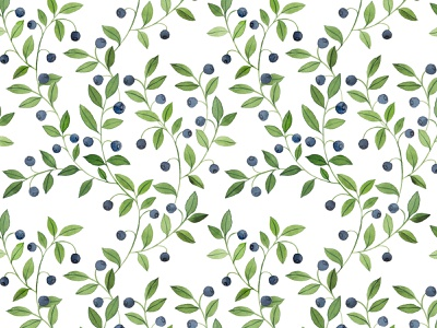 Watercolor blueberries pattern fashion illustration patterndesign apparel spoonflower textile surface pattern design surfacepattern pattern blueberry watercolor