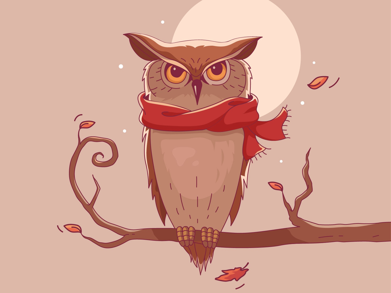 Owl 01 plain