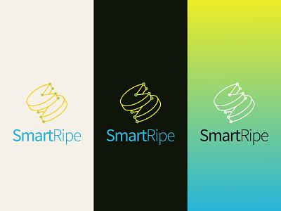 SmartRipe 2013 icon design branding logo brand