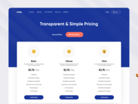 Pricing Page - Hosting