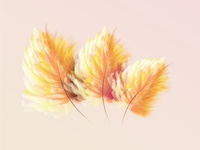 Feather brushes Illustrator