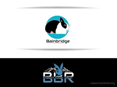 BBR Logo rabbit sketch logo illustrator illustration design brand art