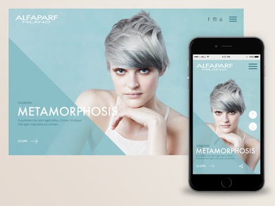 Alfapart - website proposal - blue