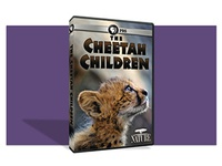 Nature DVD – Cheetah Children