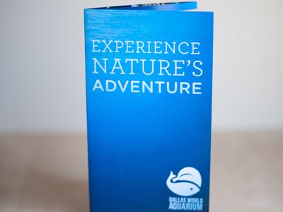 Dallas World Aquarium aquarium ocean fish brochure