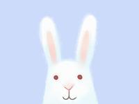 Bunny in progress