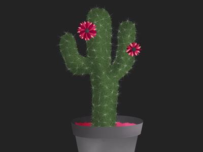 the cactus ipad pro artist painting illustration art procreate