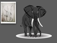 Elephant Illustration ,BLACK , WHITE