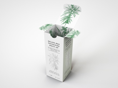 Deluxe Paper Box Packaging Mock Up