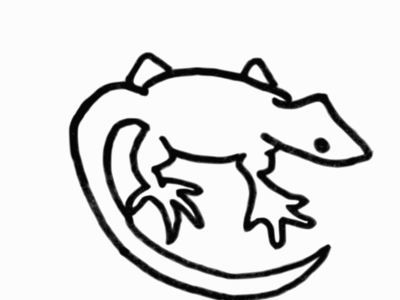 Small Lizard Sketch One