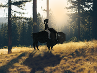Girl and The Bison (Logo + Real Image Combination Experiment)