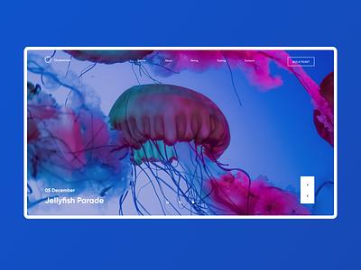 Oceanarium cover ui  ux design ui oceanarium cover