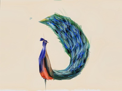 Peacock paperapp mobile conceptart illustration