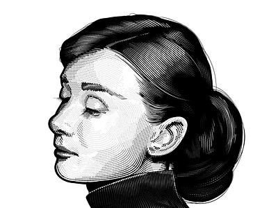 Audrey Hepburn vector hedcut portrait