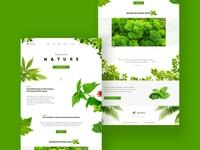 Plant Concept - Landing Page