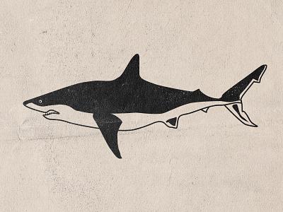 Shark blackwork animal sea ocean jaws vector shark attack shark week shark