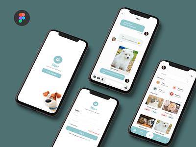 Mipet App graphic design art animation app web website design ux ui