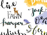 Lettering / Doodles