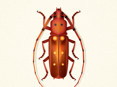 Longhorn Beetle design bug animal longhorn vector illustration insect coleoptera biodiversity beetle