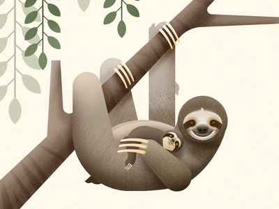 Three Toed Sloth mammal cute animal animal biodiversity wild animal baby animals threetoedsloth vector illustration sloth