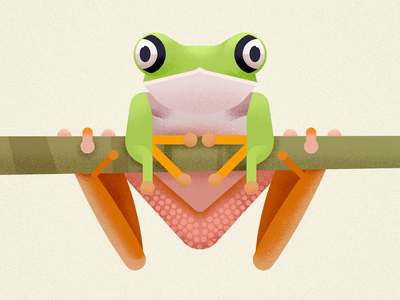 Lemur Leaf Frog animal amphibian lemur frog vector design frog biodiversity