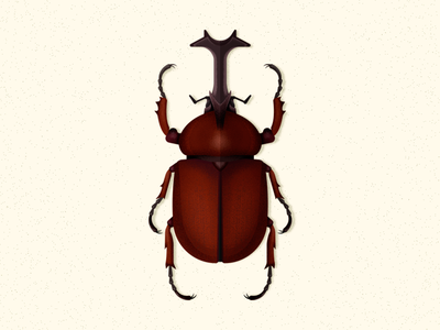 Japanese Rhinoceros Beetle biodiversity illustration coleoptera beetle insect bug vector