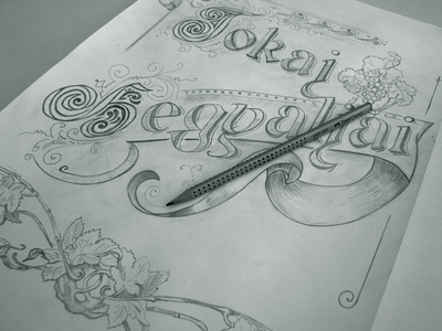 wine label sketch  wine label typography calligraphy pencil sketch