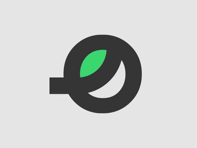 O Leaf Logo Concept 2